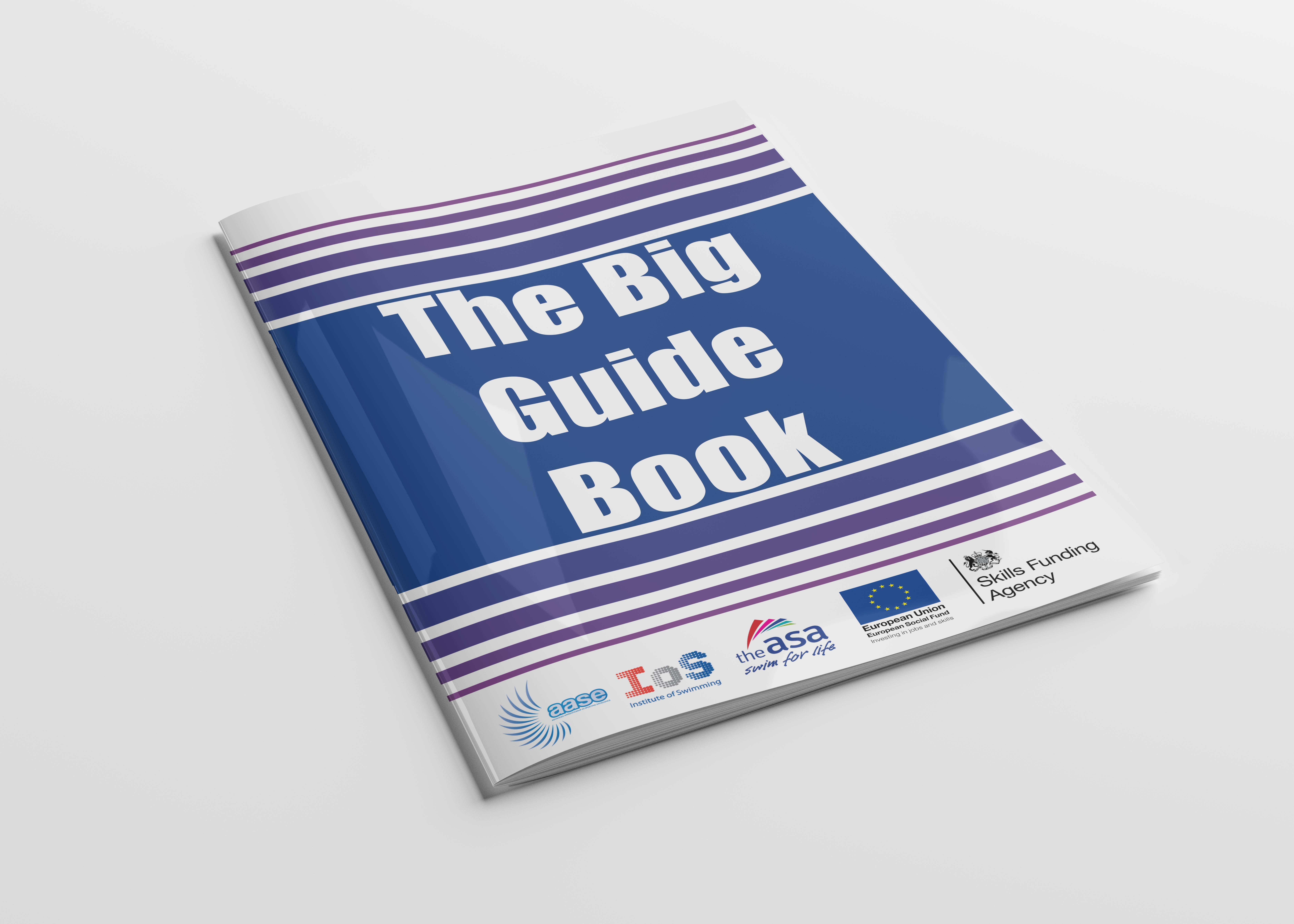 The Big Guidebook